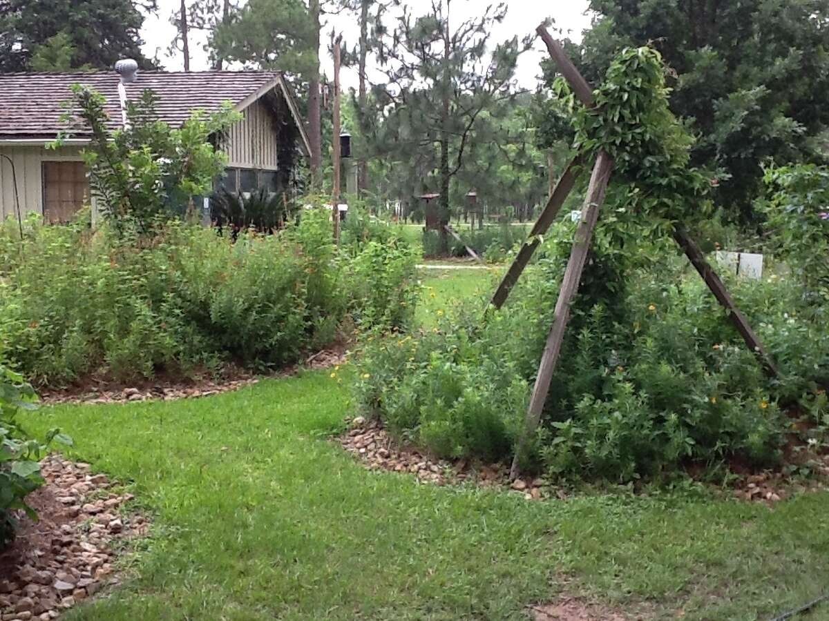 If you don't like the look of composting leaves, don't leave them on your grass. Pile them up underneath bushes and tall plants.