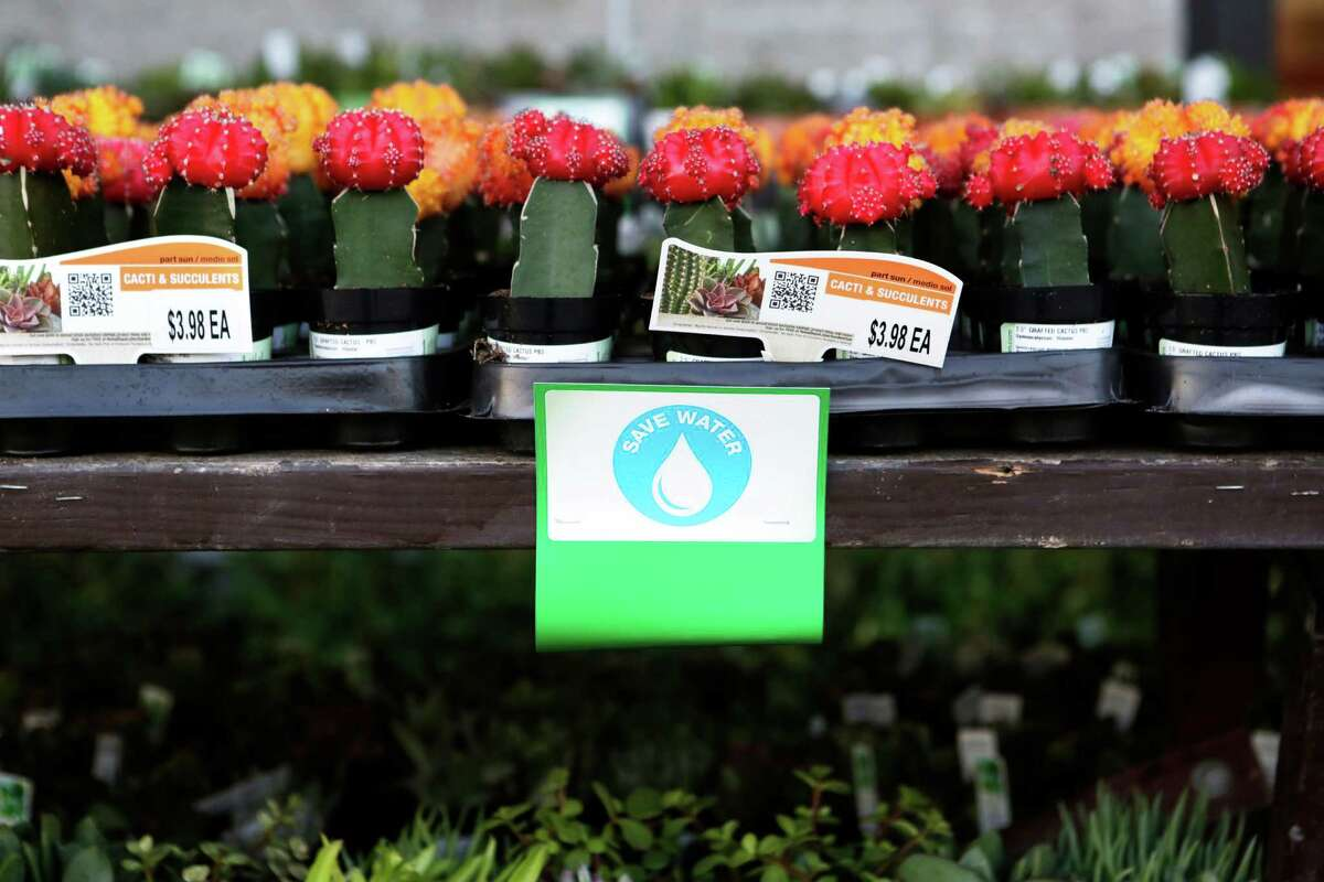 Low water plants are advertised on a rack outside of Home Depot in Colma, CA, on Thursday, April 2, 2015. Gardeners will have to adapt after California Governor Jerry Brown announced on Wednesday that water agencies in the state will be required to cut usage by 25 percent.