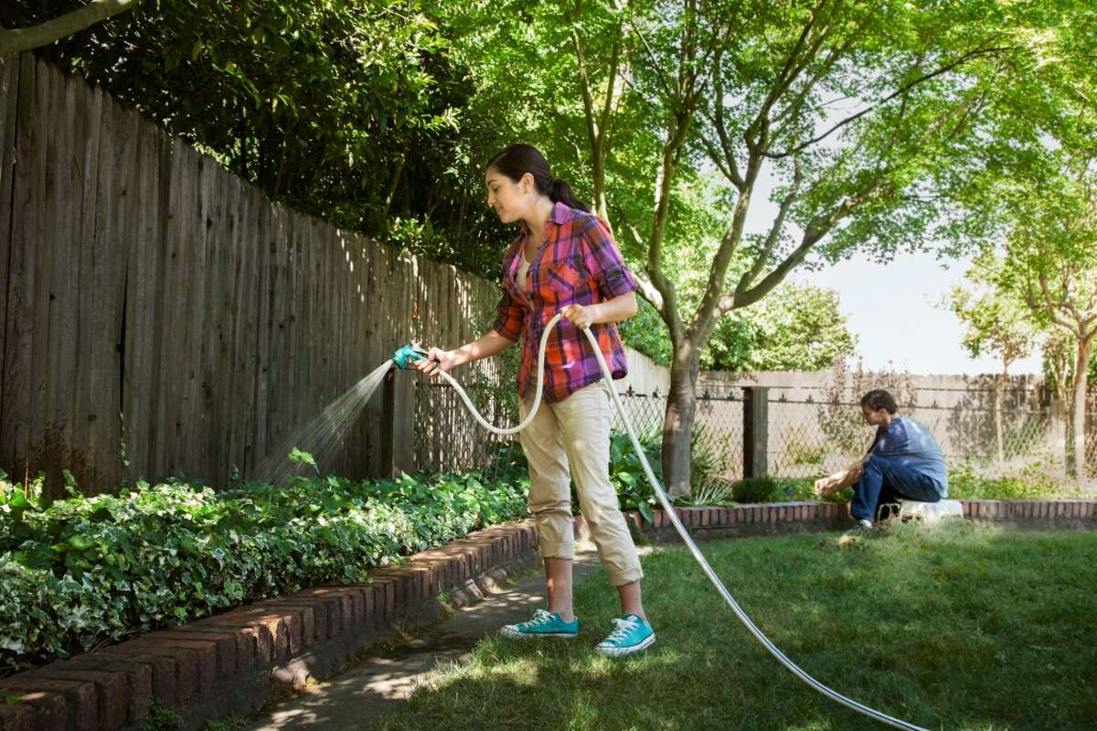 Water your garden early in the morning or in the evening when the weather is cooler. This saves 25 gallons each time.