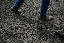 A rice farmer walks across a dried-up irrigation ditch on his rice farm in Richvale, Calif., in 2014. on Wednesday, Gov. Jerry Brown ordered officials to impose mandatory water restrictions statewide for the first time in history.