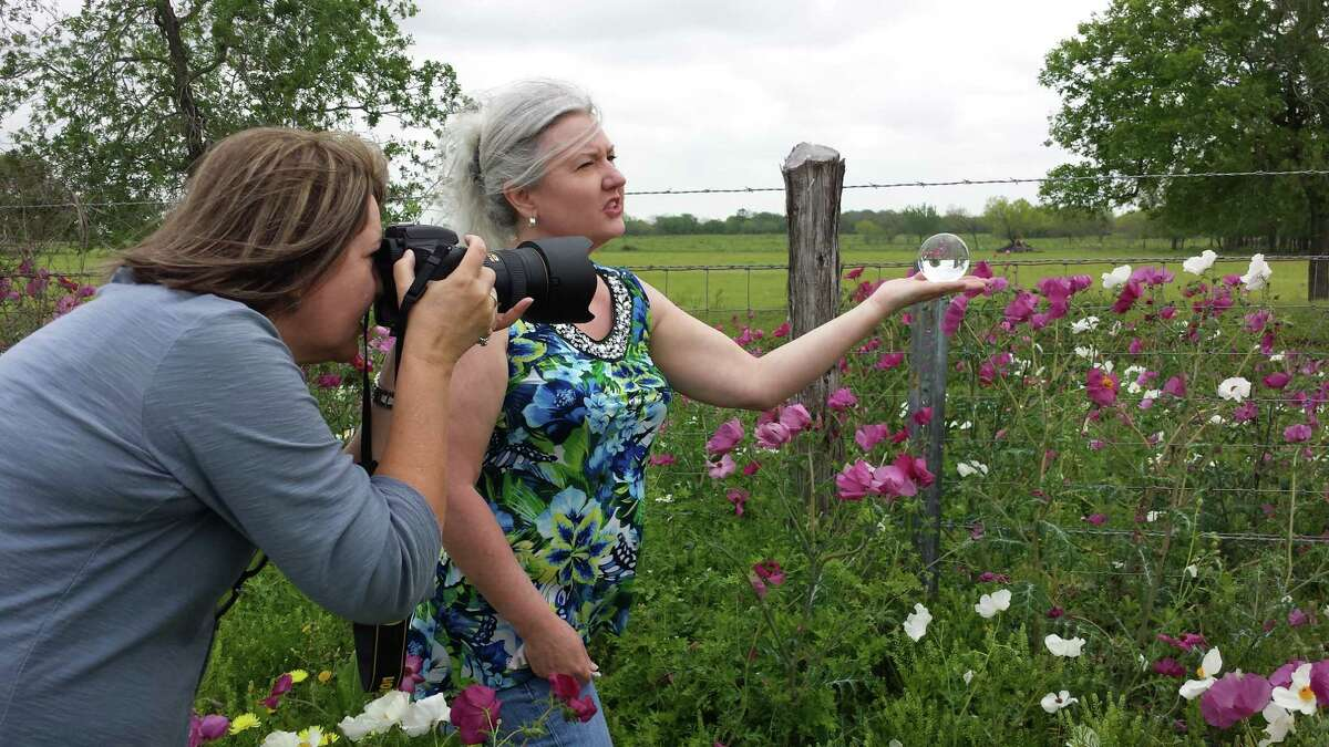 Landscape photographer Cathy Alba of San Antonio snaps shots of pink and white prickly poppies through a crystal ball held by PerriAngela Wickham. Alba and Wickham, of Washington, D.C., team up when Wickham flies in to report on bluebonnet fields. Wickham stops primarily for bluebonnets but sometimes pulls over for other pretty scenes.