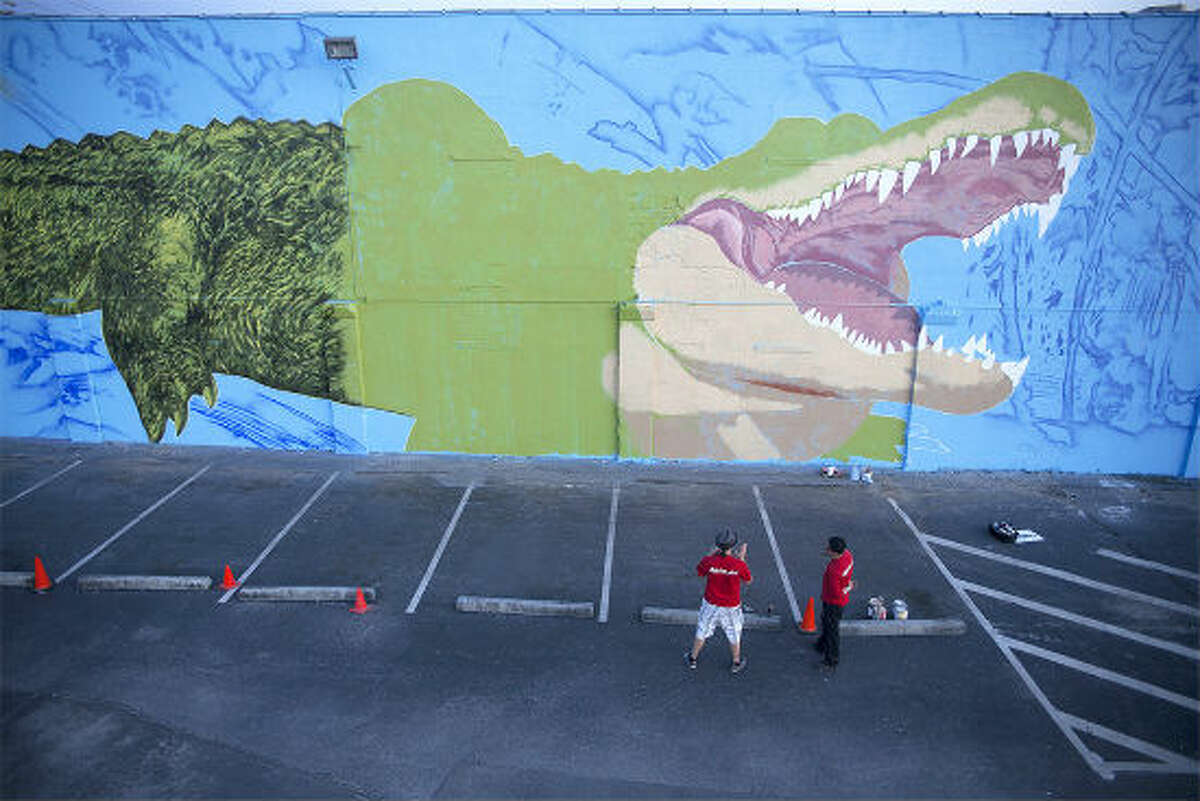 """PHOTOS: Houston's beautiful public murals Houston-based French street artist Sebastien """"Mr. D"""" Boileau paints a large, intricate mural on the University of Houston-Downtown campus of the school's mascot, Ed-U-Gator. The mural is coming to life on the north side of a storage facility, steps away from a student parking lot at Main Street and I-10."""