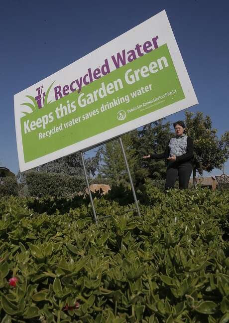 Sue Stephenson, the community affairs supervisor for the Dublin San Ramon Services District shows off the landscaping around the district's building that uses recycled water to keep plants green, in Dublin, Calif., as seen on Fri. April 3, 2015. Photo: Michael Macor, The Chronicle