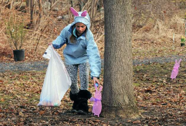 Lexie D'Iorio, 10, takes on the duty of hiding the eggs prior to an Easter egg hunt as part of the EGGStravaganza at High Rock Park on Saturday April 4, 2015 in Saratoga Springs, N.Y. (Michael P. Farrell/Times Union) Photo: Michael P. Farrell / 00031295A