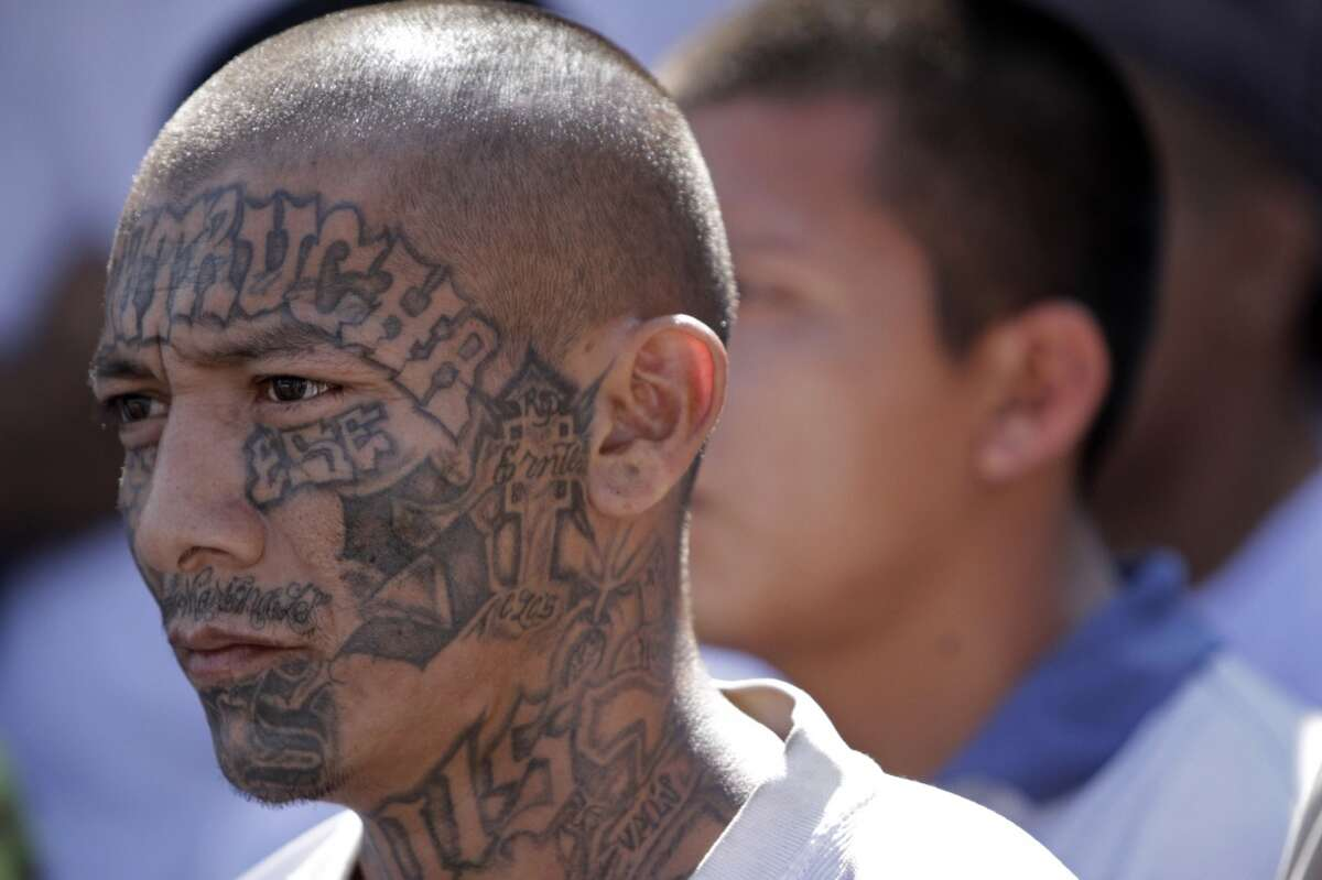1. The MS13 gang is known as Mara Salvatrucha. A recent federal indictment describing the gang notes that the name is a combination of Spanish slang terms: