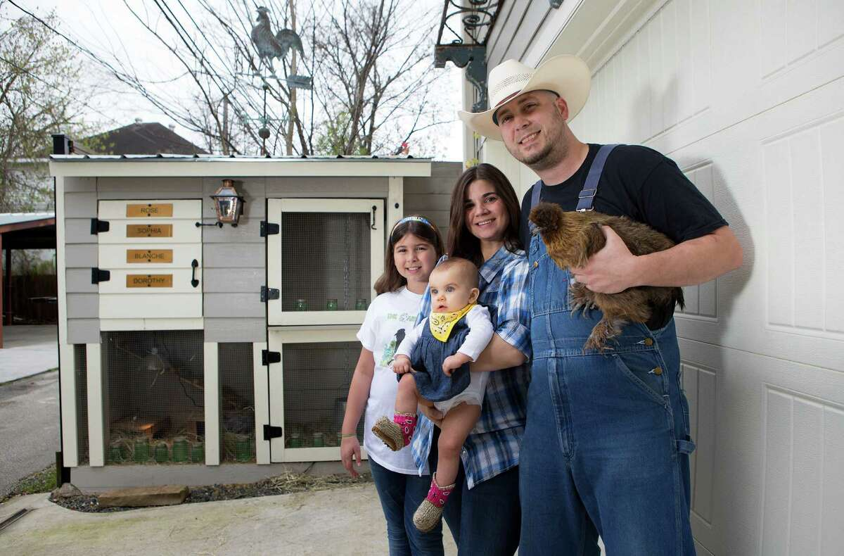 Mike Graham, from front, and Nicole Graham, shown with children Harper, 8 months, and Haylie, 10, build custom coops and hold educational sessions in schools. Below: Eggs from the author's own hens. Egg recipes, page E4.