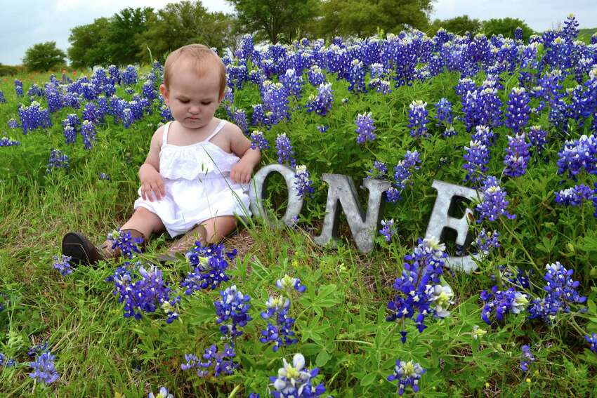 Here is a photo of my daughter, Stella Mae, taken in a field of bluebonnets this past weekend.