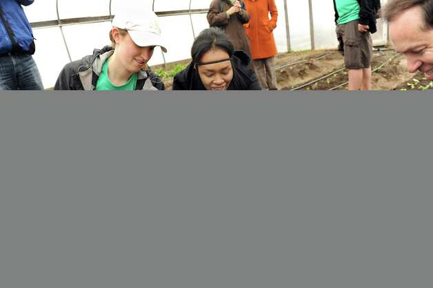 Farm manager Julia Cosgrove, left, and Sharayjah Williams, 17, center, plant lettuce in a hoop house with Acting State Health Commissioner Howard Zucker, right, on Wednesday, April 8, 2015, at Capital Roots in Troy, N.Y.  Zucker visited the urban farm during National Public Health Week to discuss how access to healthy food helps prevent obesity. (Cindy Schultz / Times Union) Photo: Cindy Schultz / 00031348A