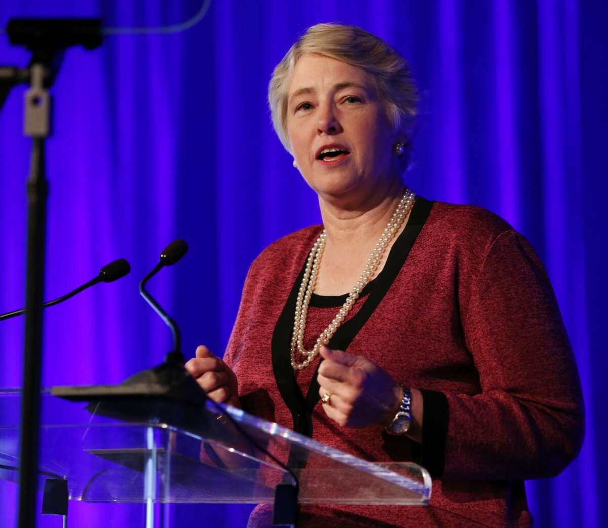 Mayor Annise Parker ends her third and final term in January.