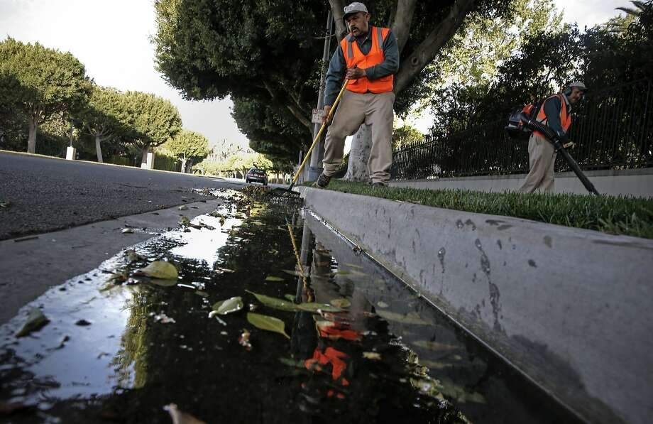 Gardener, Valentine Lopez  collects debris from runoff water which puddled in the gutters along Sunset Blvd. after early morning irrigation in the Southern California City of Beverly Hills, Calif., as seen on Thurs. April 9, 2015. The City of Beverly Hills, one the the largest users of water in California may be required to cut their water consumption by 35 percent during this the fourth year of drought in the State of California. Photo: Michael Macor, The Chronicle