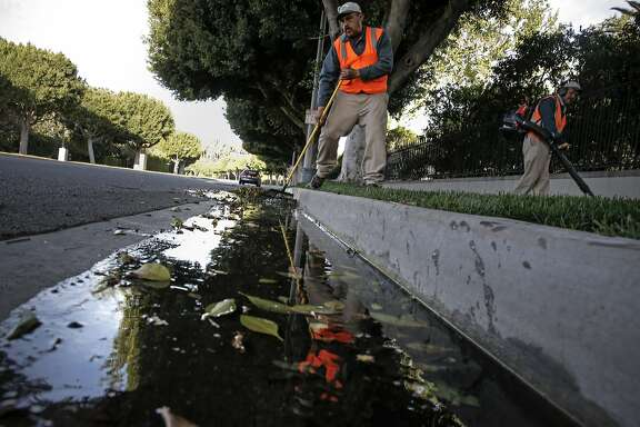 Gardener, Valentine Lopez  collects debris from runoff water which puddled in the gutters along Sunset Blvd. after early morning irrigation in the Southern California City of Beverly Hills, Calif., as seen on Thurs. April 9, 2015. The City of Beverly Hills, one the the largest users of water in California may be required to cut their water consumption by 35 percent during this the fourth year of drought in the State of California.