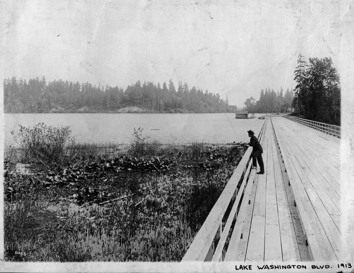 Lake Washington Boulevard near Seward Park, pictured June 1913.
