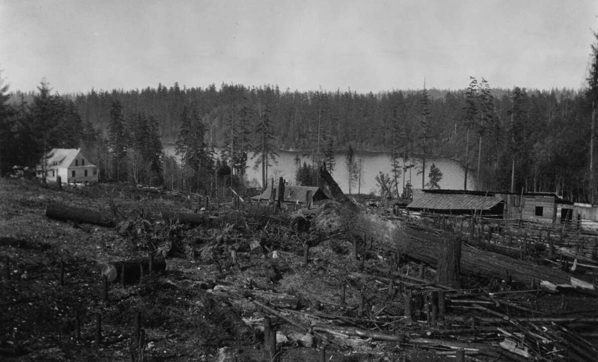 Bailey Peninsula, now known as Seward Park, pictured across Andrews Bay in May 1903.
