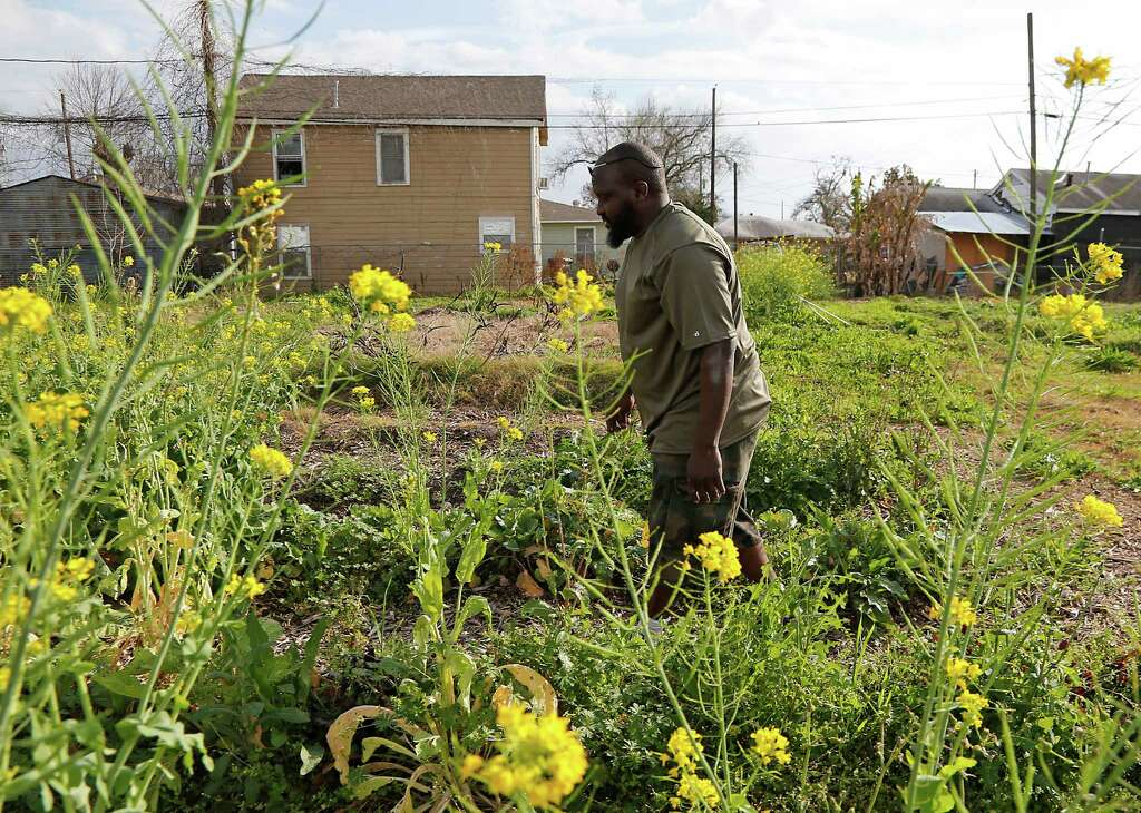 Kelvin Williams Walks Through The Garden Which He Uses To Supply The  Oldways African Heritage Classes