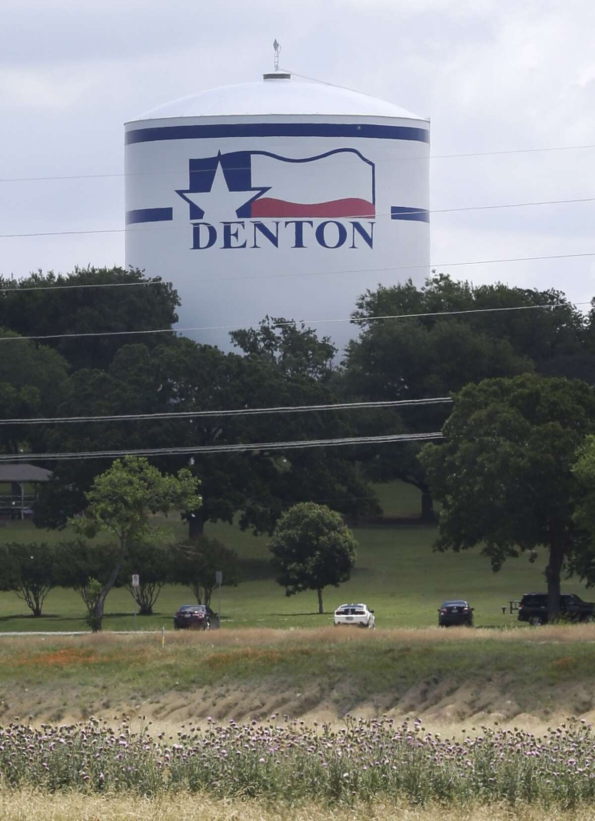 13. Denton Crime(1 is most crime):22 Police(1 is least investment):11 Risk(1 is highest):22