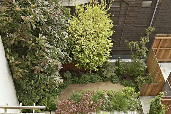 Landscape designer Patricia St. John's award-winning garden for a S.F. home is eye-catching and kid friendly.