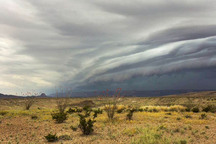 Gary Nored was photographing wildflowers on the Big Bend Ranch State Park in West Texas when he was caught in a supercell storm that soaked the entire park.