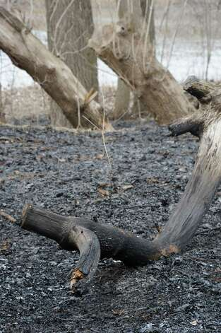 Charred ground from a brush fire between the bike path and the Mohawk River near Schenectady County Community College on Tuesday, April 14, 2015 in Albany, N.Y. (Lori Van Buren / Times Union) Photo: Lori Van Buren