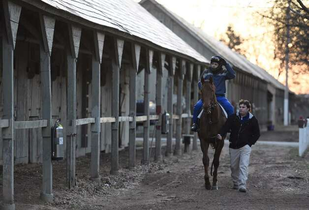 Trainer Kerry Metivier leads a horse to the Oklahoma Training Track to be first of the season on Wednesday, April 15, 2015.  (Skip Dickstein/Times Union)