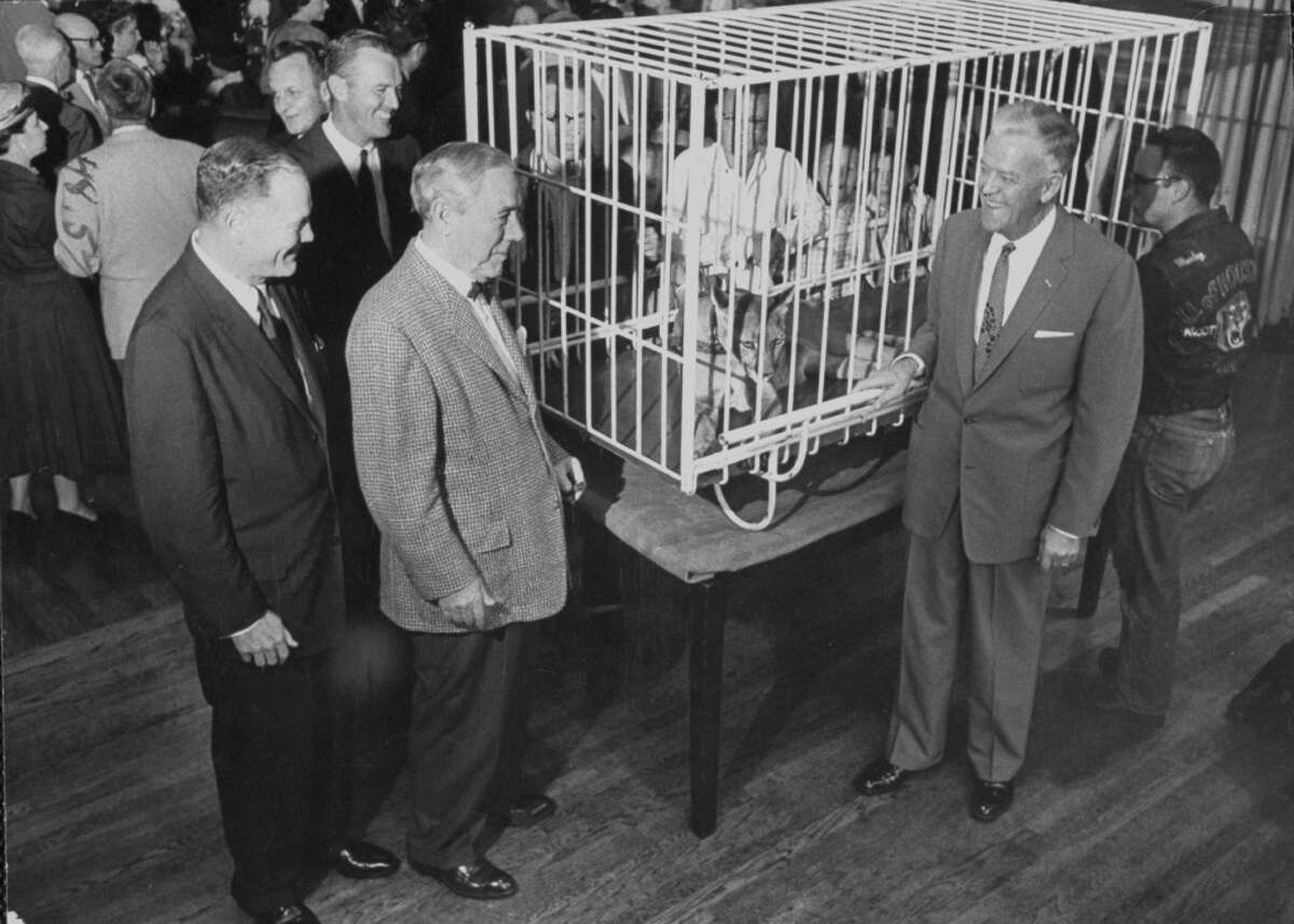 Multimilionaire Hugh Roy Cullen (second from left) attends a University of Houston pre-game cocktail party with caged cougar in 1956.
