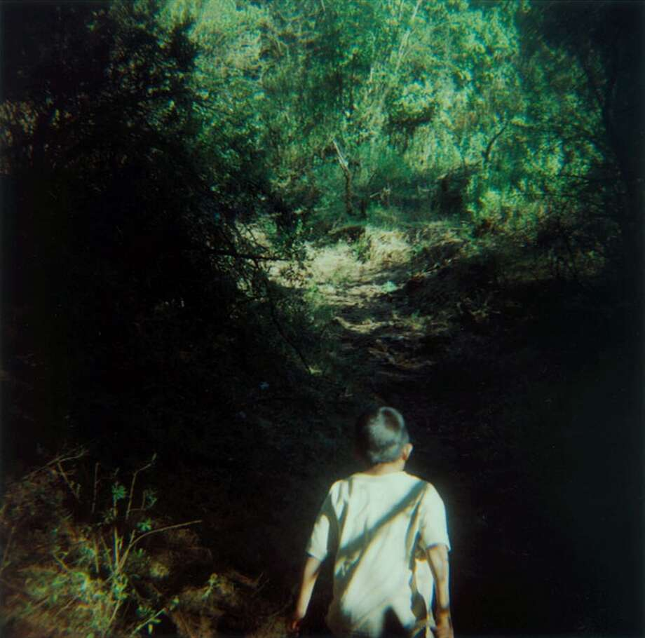 "Amy Blakemore's ""Boy in the Woods,"" a 2010 chromogenic print. Blakemore is Art League Houston's 2015 artist of the year. Photo: Courtesy Of The Artist"