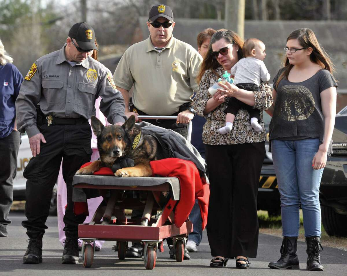 Ridgefield Police Officer Shawn Murray, left, and his family escort Zeus, Murray's partner, a german shepherd who worked for the Ridgefield Police Department who was honored with a final ride before being euthanized because of a severe degenerative hip disorder in to the Ridgefield Veterinary Hospital, on Wednesday afternoon, April 15, 2015, in Ridgefield, Conn.