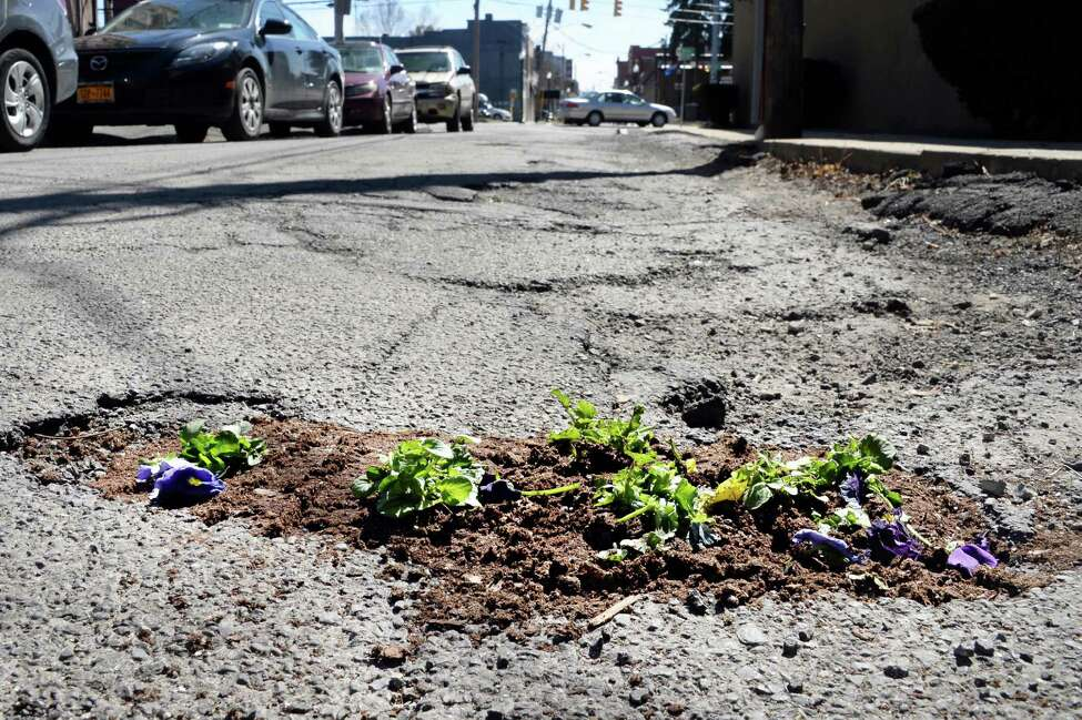 Pansies planted in a pole hole on North Center Street have fared poorly in traffic Wednesday April 15, 2015 in Schenectady, NY. (John Carl D'Annibale / Times Union)