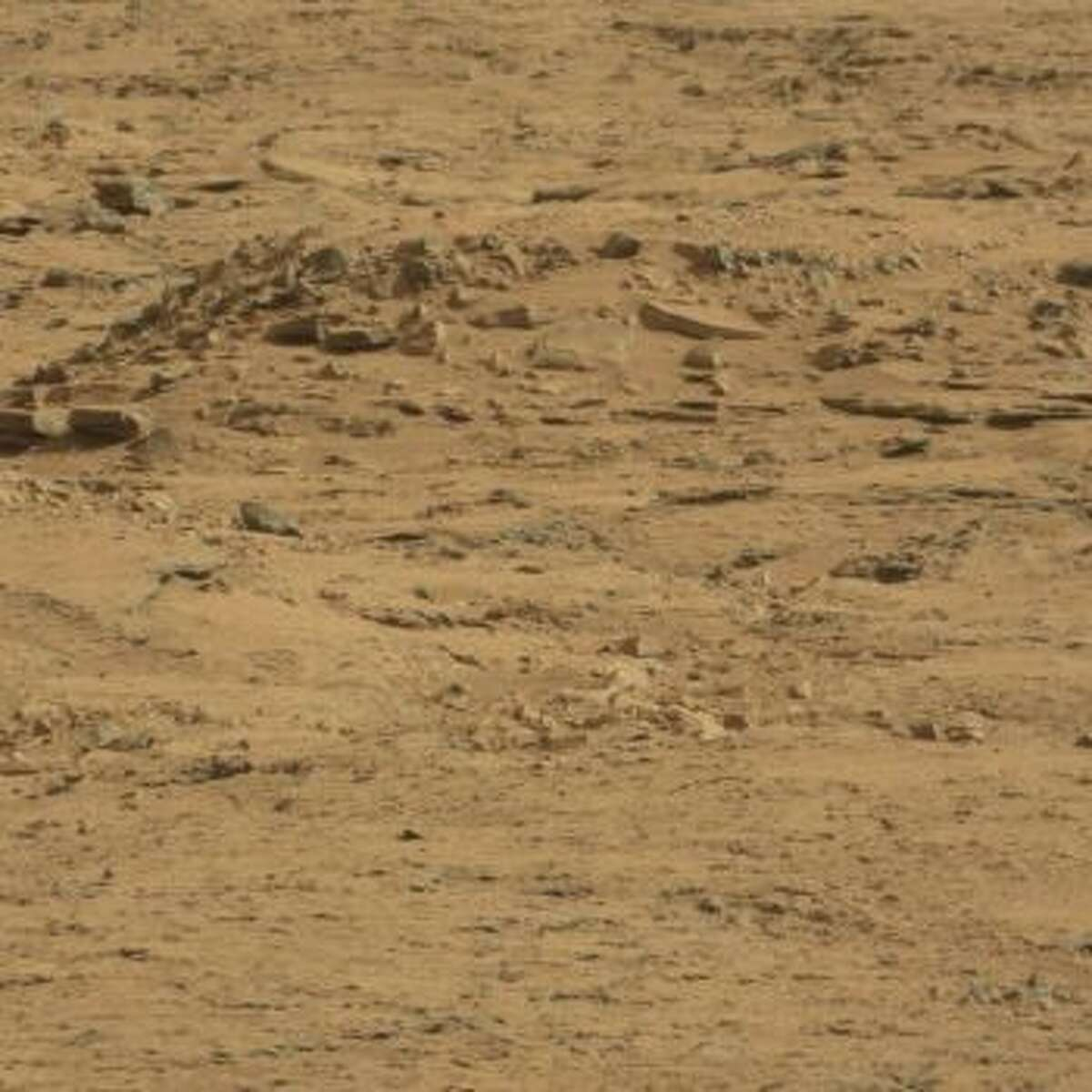 An online group has purportedly spotted a coffin on Mars.