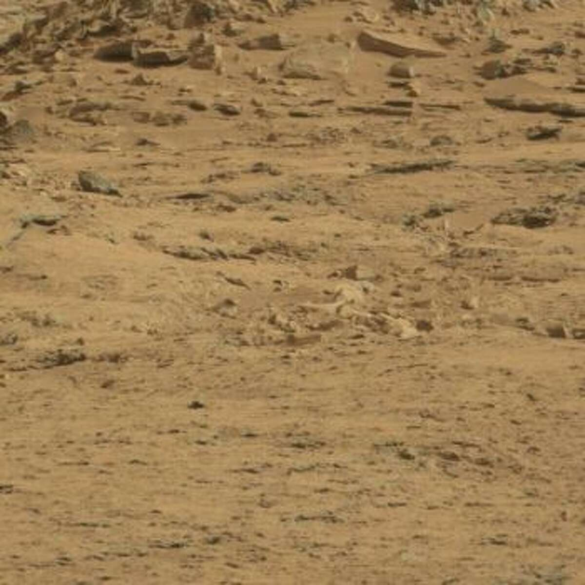 An online group has purportedly spotted a coffin on Mars. It's in the bottom half of the frame, near the center.