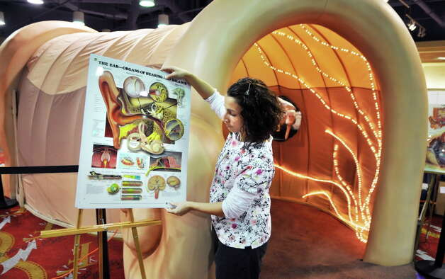 St. Peter's speech pathologist Tiana Pendleton finishes setting up the walk-through model of a human ear as part of the Journey Through the Body exhibit at Colonie Center in Colonie Thursday afternoon March 31, 2011. Opening Friday, the exhibit allows children to explore large-than-life-size models of the human body.   (John Carl D'Annibale / Times Union archive) Photo: John Carl D'Annibale / 00012591A