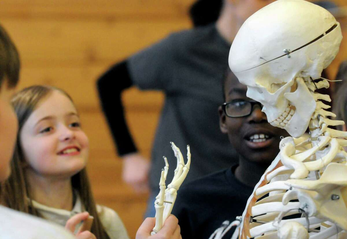 Nine-year-old Brooke Lockett, left, of Hoosick Falls takes a guess at how many bones in a human hand during Journey Through The Body coordinated by clinicians from St. Peter?'s Health Partners at the Colonie Center on Friday April 167 2015 in Colonie, N.Y. (Michael P. Farrell/Times Union)