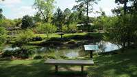 Hermann Park's Japanese Garden serves as city oasis - Photo