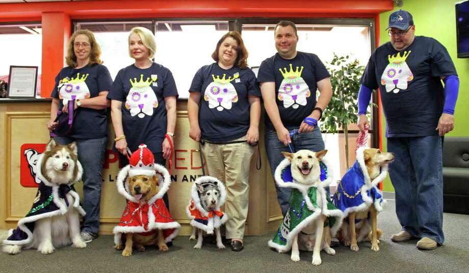 2015 El Rey Fido and Royal Court Photo: San Antonio Humane Society,  Courtesy