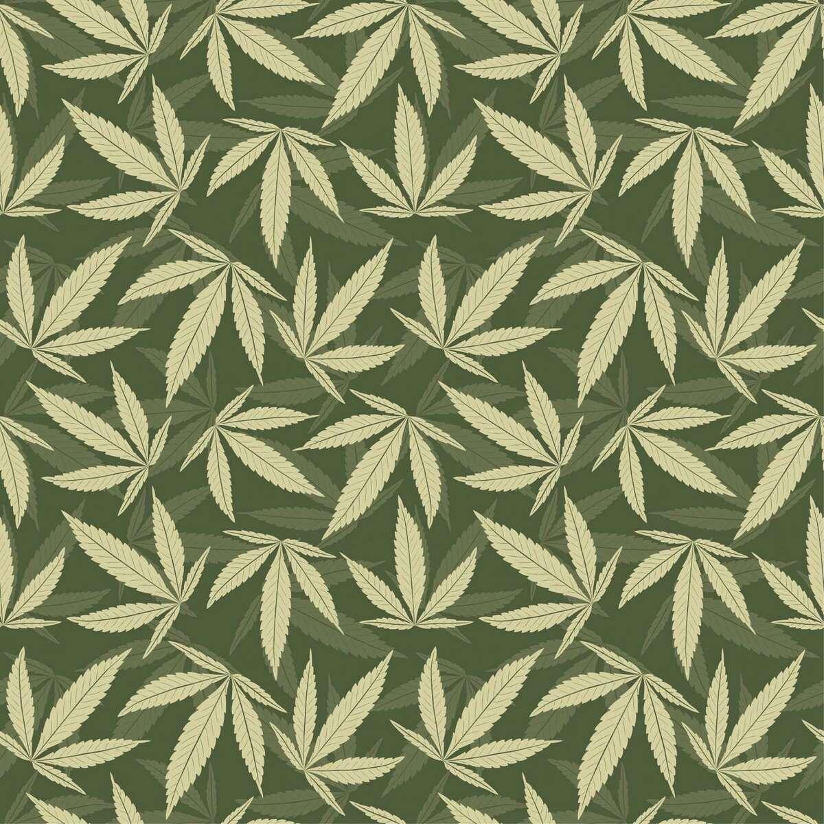 marijuana leaves marijuana leaves in one pattern
