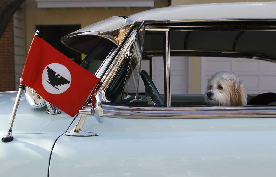 Mia the dog sits in her owner David Polanco's car before the Cesar Chavez Day Parade in the Mission District of San Francisco, Calif. Saturday, April 18, 2015 Photo: Jessica Christian, The Chronicle