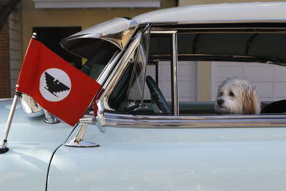Mia the dog sits in her owner David Polanco's car before the Cesar Chavez Day Parade in the Mission District of San Francisco, Calif. Saturday, April 18, 2015
