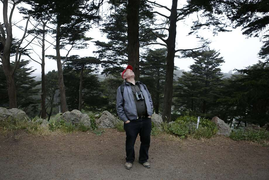 Expert birder and San Francisco resident Alan Hopkins (63) tries to spot a bird in Golden Gate Park in San Francisco on Sunday, April 19, 2015. Early Sunday morning, Hopkins embarked from his home on a day-long walk to find birds of 100 different species as part of the Audubon Society's annual Birdathon fundraiser. Photo: Terray Sylvester, The Chronicle