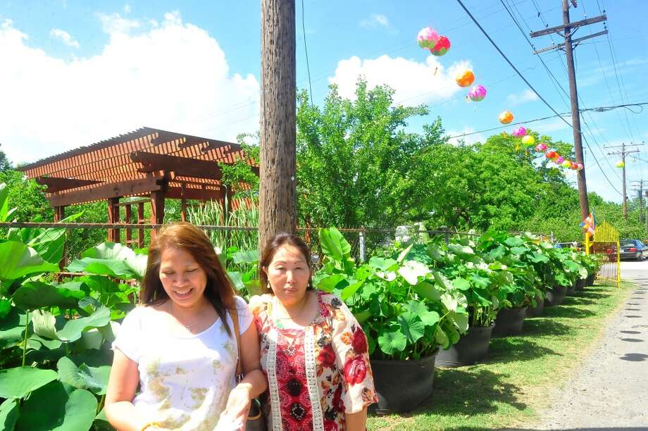 The Buu Mon Buddhist Temple in Port Arthur on Sunday celebrated the Lotus Garden and Bamboo Festival. Photo taken Sunday, June 8, 2014.