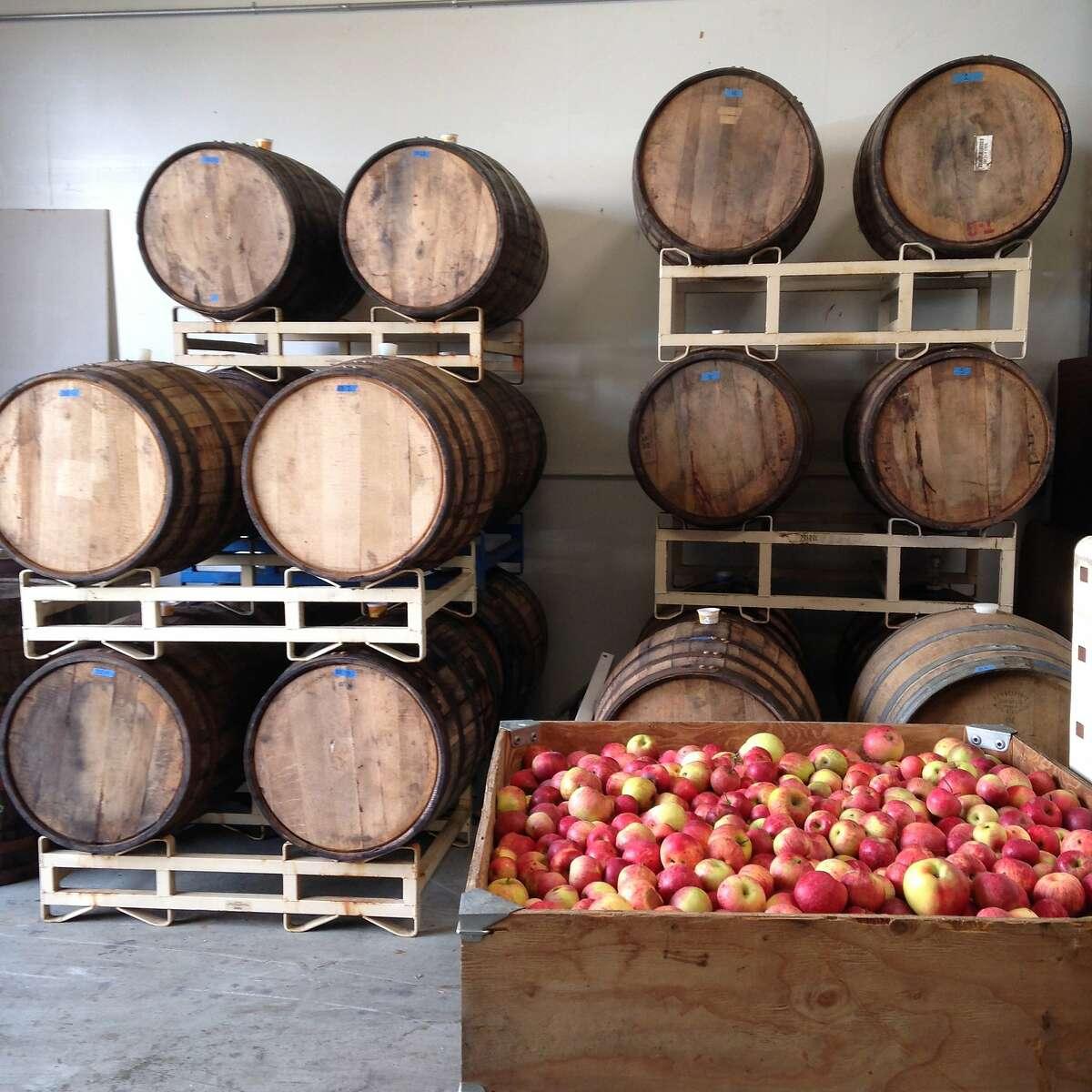 Barrels and apples at Tilted Shed Ciderworks.