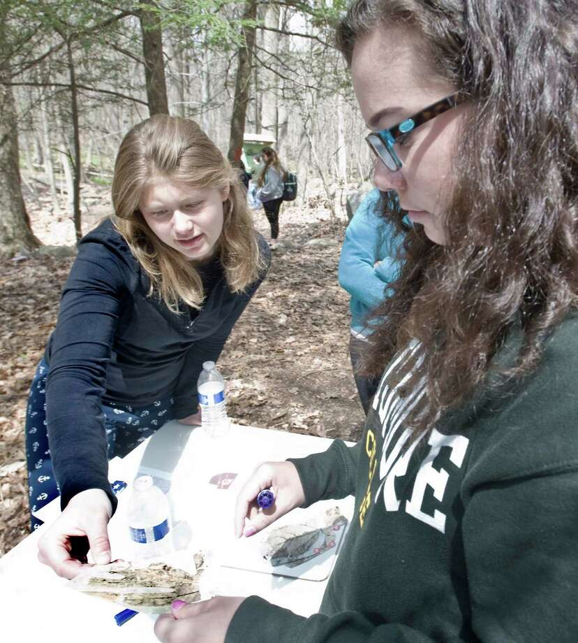 New Fairfield High School seniors Natalie DeLeon and Stephanie Santoro examine a photograph of a leaf to determing if the edges are smooth or jagged which will reveal past temperature conditions at the Earth Day celebration held at The Hidden Valley Nature Lab in New Fairfield. Wednesday, April 22, 2015 Photo: Scott Mullin / The News-Times Freelance