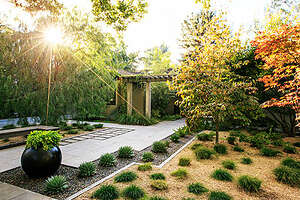 Zen retreat    This Palo Alto, CA front yard was designed be a point of interest for anyone passing by. Landscape designer Chris Jacobson kept mostly to a green palette to create tranquility and year-round good looks. Clumping Berkeley sedge dots the yard, while spiraled Aloe  polyphylla  and asparagus ferns line the drive. Japanese maples and dogwoods provide softness, shade, and color. Jacobson placed an arbor supported by concrete columns 7 feet from the house, creating a courtyard. The planting beds, mulched with tumbled glass in shades of blue and green and buff-colored decomposed granite, add texture while keeping the palette serene.     Design: Chris Jacobson of GardenArt Group ( gardenartgroup.com ).