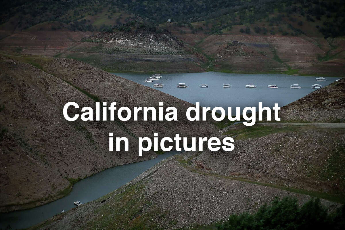 MORE PHOTOS: See photos of the historic drought in California. Above: Houseboats are dwarfed by the steep banks of Lake McClure on March 24, 2015 in Snelling, California. More than 3,000 residents in the Sierra Nevada foothill community of Lake Don Pedro who rely on water from Lake McCLure could run out of water in the near future if the severe drought continues. Lake McClure is currently at 7 percent of its normal capacity and residents are under mandatory 50 percent water use restrictions.