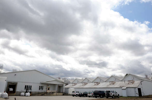 Washington County Agri-Business a former mushroom facility that will be converted to grow marijuana during Compassionate Relief Centers of New York, Inc. Open House on Thursday April 23, 2015 in Jackson, N.Y. (Michael P. Farrell/Times Union) Photo: Michael P. Farrell / 00031546A