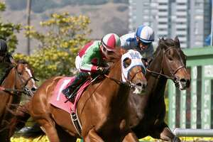 G.G. Ryder wins San Francisco Mile - Photo