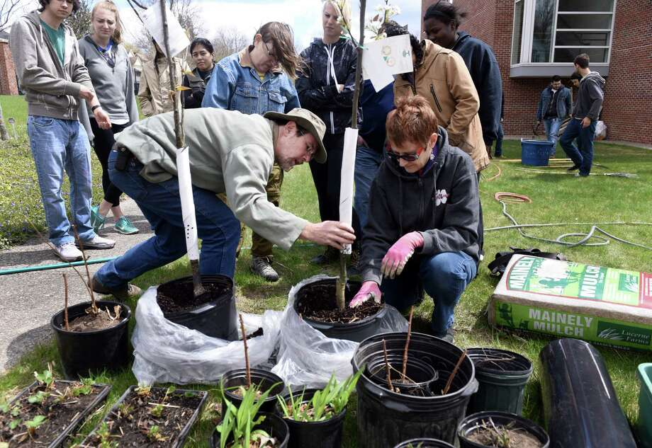 Jono Neiger, left, a founding partner of Regenerative Design Group, works with students and faculity Monday to create a garden. A group of students and volunteers at Western Connecticut State University are planting the schoolâÄôs first permaculture garden, which acts as a sustainable food supply and involve ecosystems that mimic nature. There will also be a section of plants from Native American reservations.  The garden is behind the Science Building on the universityâÄôs Midtown campus, Monday, April 27, 2015. Photo: Carol Kaliff / The News-Times