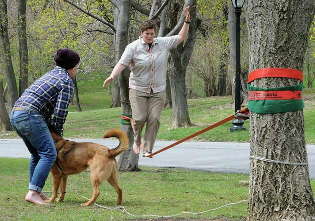 Kelsey Lane of Albany works on her slacklining skills as her friend Staphanie Levine of Albany watches with her dog Charley in Washington Park on Monday, April 27, 2015 in Albany, N.Y.  (Lori Van Buren / Times Union) Photo: Lori Van Buren