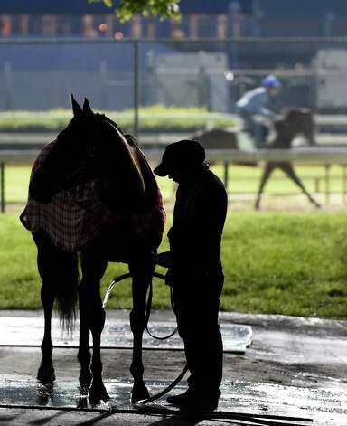 A groom puts cooling water on the legs of a horse in the barn area of Churchill Downs Tuesday morning, April 28, 2015, in Louisville, Ky. The 141st running of The Kentucky Derby starts Saturday.  (Skip Dickstein/Times Union) Photo: SKIP DICKSTEIN