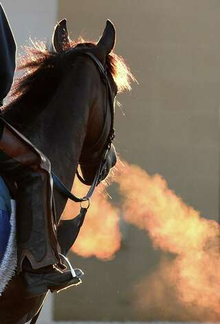 The warm breath from a horse is clearly shown on a chilly morning in the barn area of Churchill Downs Tuesday, April 28, 2015, in Louisville, Ky. The 141st running of The Kentucky Derby starts Saturday.  (Skip Dickstein/Times Union) Photo: SKIP DICKSTEIN