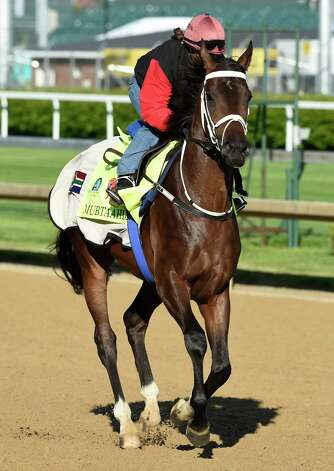 Mubtaahij gallops at Churchill Downs Tuesday morning, April 28, 2015, in Louisville, Ky. The 141st running of The Kentucky Derby starts Saturday.  (Skip Dickstein/Times Union) Photo: SKIP DICKSTEIN