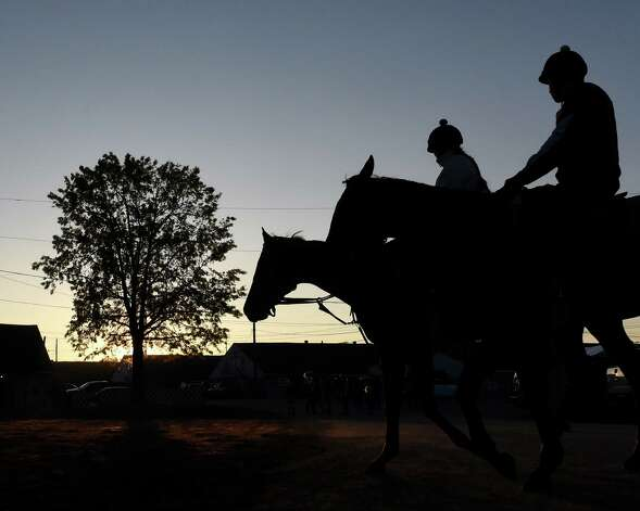 Horses head for the track for early morning training at Churchill Downs Tuesday, April 28, 2015, in Louisville, Ky. The 141st running of The Kentucky Derby starts Saturday.  (Skip Dickstein/Times Union) Photo: SKIP DICKSTEIN